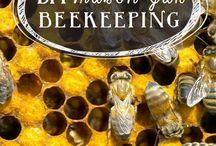 Bee Keeping / by Jennifer Hough