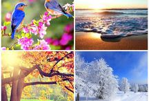 Ročné obdobia