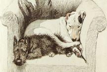Il·lustracions de gats i gossos