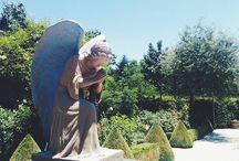 Cloister of the Black Swans / Hearing God's whisper in nature