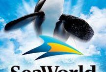 Seaworld Trip (YAYyyyy)