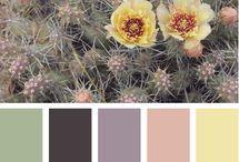 barevna inspirace