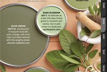 Colour Ideas: Sage Green