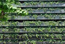 Garden (Zahrady a zelen)