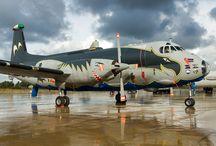 Aviones de guerra 6 /    Aviones de guerra 6