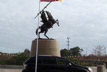 Flagpoles / Patriotic Pride