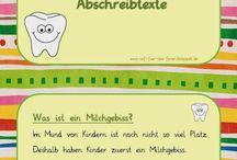 Grundschule Zähne