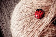 It's a lady bug's life / by Julie Steigerwalt