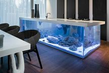 Tanked aquariums