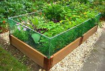 Tips til hagen / Gode tips til hagen