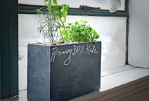 Planter Offerings