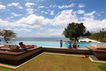 Amorita Resort in Bohol Philippines | Sea Explorers Philippines / Amorita Resort in Bohol Philippines. Photos of resort, beach, rooms, amenities, pools, and many more.