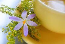 Tea Time / by Juliana Curtis