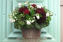 Lucky to be Flower Farmers / Plant ideas for flower arranging!