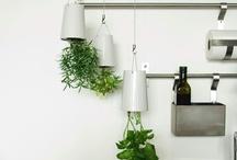 Huertos en... el interior de casa / El espacio no es problema para poder disfrutar de un pequeño jardín comestible. Descubre ideas originales e inspiradoras para aprovechar cualquier rincón de la casa!
