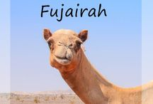 Fujariah - United Arab Emirates