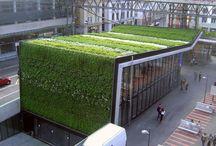 Techos y paredes verdes