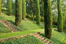 Valleywood house garden