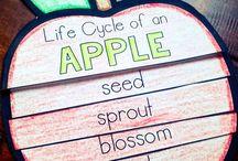Æbler i børnehaven