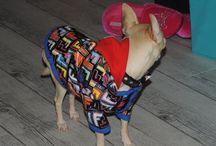 Houpy dans son nouveau manteau / Couture
