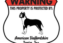 American Staffordshire Terrier Signs and Pictures / Warning and Caution American Staffordshire Terrier Signs. https://www.signswithanattitude.com/american-staffordshire-terrier-signs.html