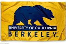 Cal Berkeley / by Kasey Williams