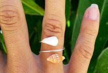sea shells dyi