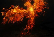 Rise Of The Dead Phoenix