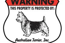 Australian Terrier Signs and Pictures / Warning and Caution Australian Terrier Signs. https://www.signswithanattitude.com/australian-terrier-signs.html