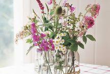 Flores/flowers