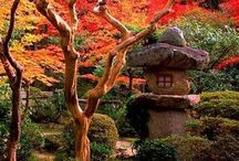 nihon teien / Anything related to Japanese gardens.