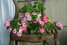 sandalyede çiçek