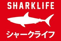 Sharklife