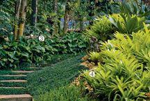 caminhos e jardins