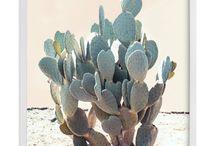 Cactus prints