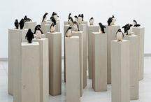 Penguin / by Jennifer Boyles