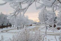 Winter - Inverno / by Magela Bernardo