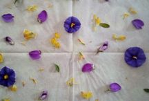 Decorare con carta e fiori / Separare i tovaglioli, stenderli su un foglio di carta forno e spennellare con colla vinilica diluita con acqua ( 1:2) Poggiare i fiori sul tovagliolo e coprire con un altro velo di carta. Spennellare con altra colla e coprire con un altro foglio di carta forno.  Passare il mattarello più volte e poi con molta delicatezza togliere l'ultimo foglio di carta forno e far asciugare. Togliere l'ultimo foglio di carta forno e pressare il foglio ottenuto per qualche giorno. Usare a piacere.
