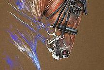конь як