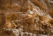 Dead Sea. Ein Gedi. Masada. Qumran