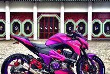 cecy motos