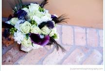 ahhhmazing flowers / by Samantha Denby