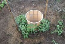 Jardin & jardinage