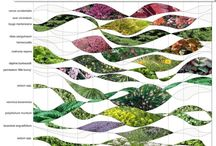 vegetation calendar ideas