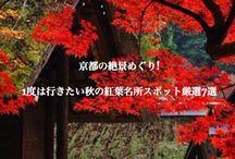 日本旅行 - Japan Travel / Some ideas for things to see on a trip to Japan. Click through the pins for more in depth info  しらなきゃ損する日本国内旅行情報です。