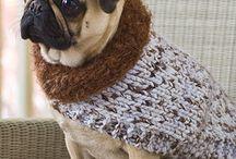 Crochet pug clothes