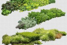 Photoshop vegetation