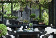black terrace