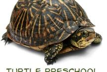 Unit Study   Reptiles