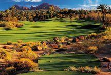 Golf / TEE off de rêve